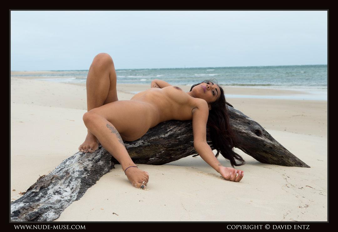 nude-muse_damour_windswept_nude007
