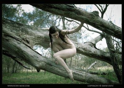 Angela Fallen Nude Tree