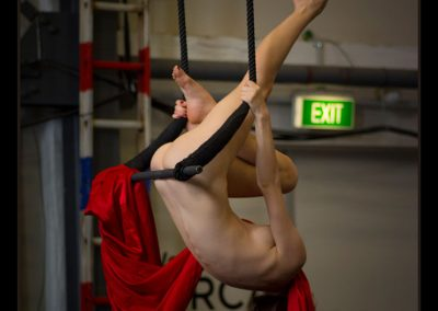 Moofy Nude Circus