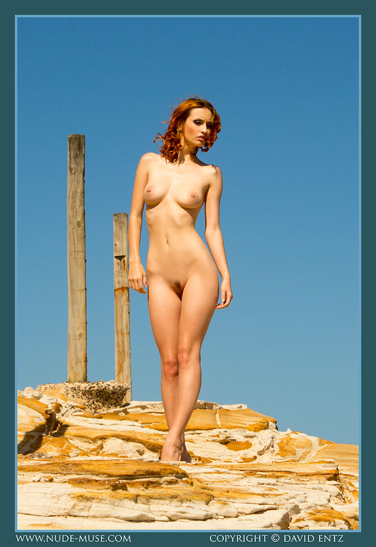 nude-muse_moofy_wooden_poles004