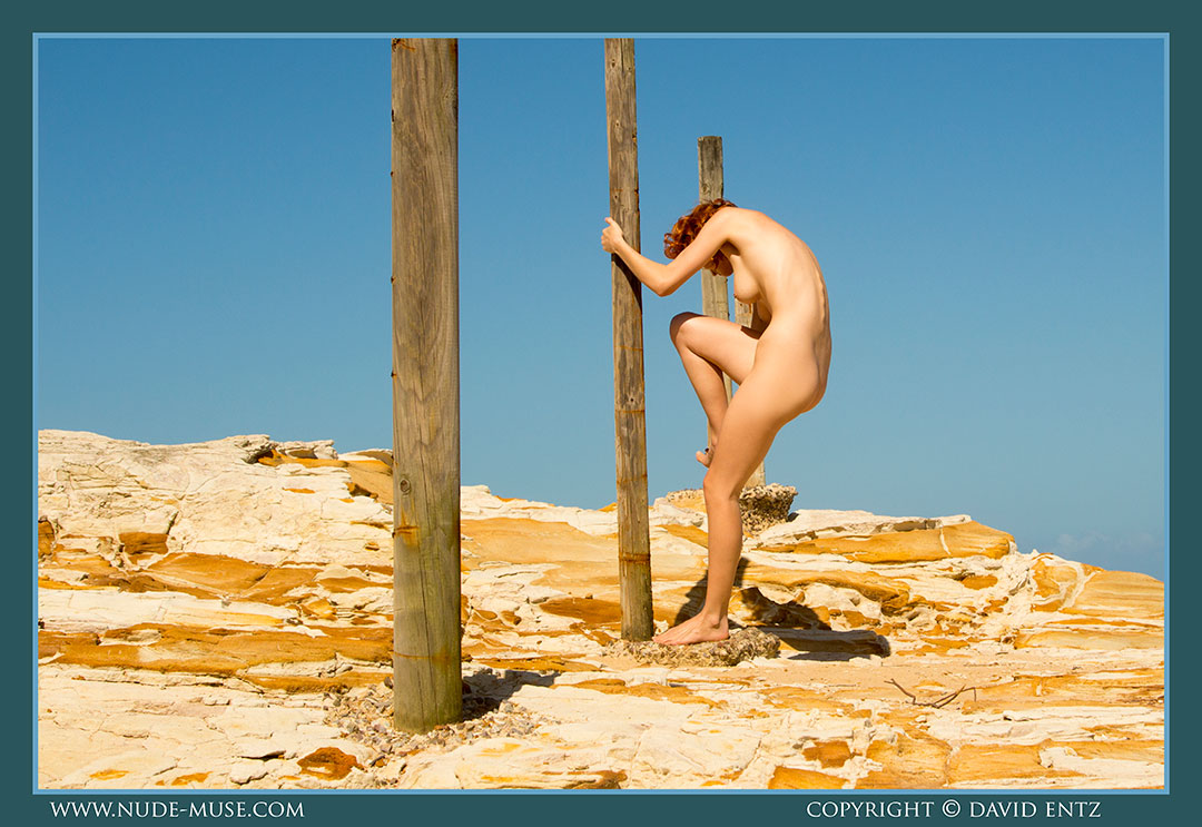 nude-muse_moofy_wooden_poles049