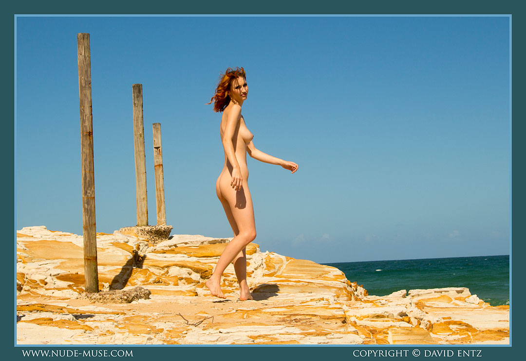 nude-muse_moofy_wooden_poles073