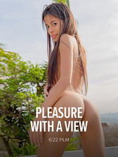 Pleasure With A View